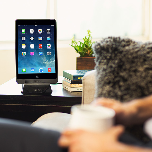 iPort Charge Case and Stand for iPad and iPad mini