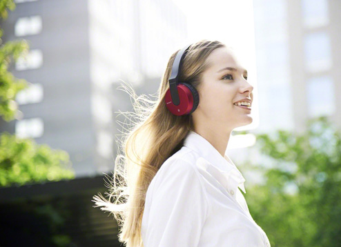 Sony Bluetooth Headphones MDR ZX550BN